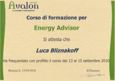 Avalon energy advisor Luca bliznakoff
