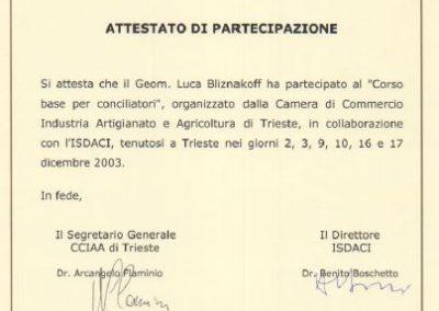 Cciaa Trieste corso conciliatori Luca Bliznakoff