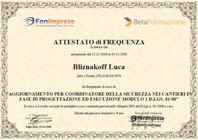 Corso di aggiornamento Cordinatore della sicurezza nei cantieri geometra Luca Bliznakoff BlizStudio Trieste